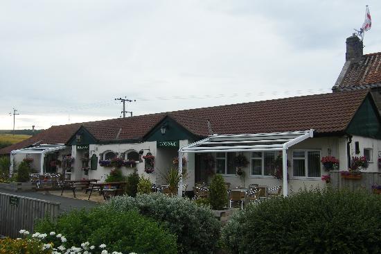 The Meadow House: Outside area