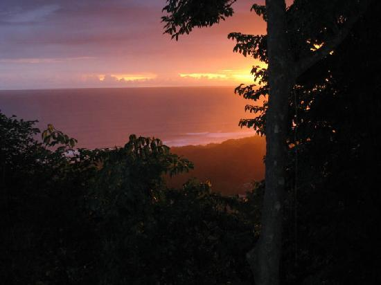 Gumbo Limbo Villas: View from friends patio at sunset