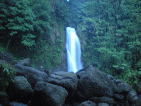Papillote Tropical Gardens: beautiful waterfall at trafalger