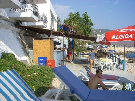 Elit Restaurant & Beach : il bancone del bar/ristoro