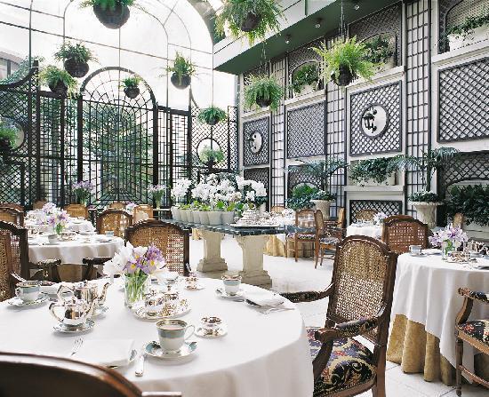 Alvear Palace Hotel: Jardin d'hiver L'Orangerie