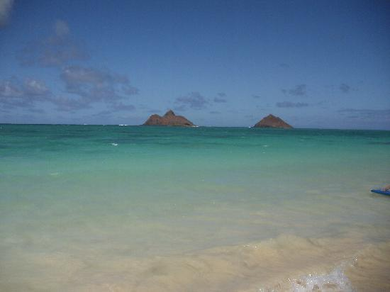 Lanikai Beach: The water is amazing colors