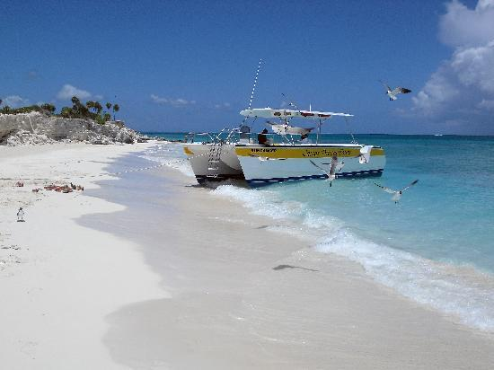 Grace Bay Club: on our snorkeling tour