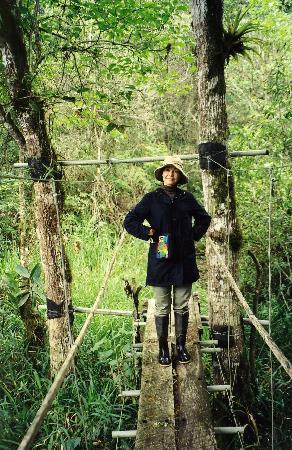 El Refugio de Intag Lodge: Jan on the bridge