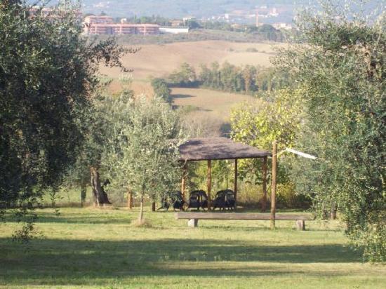 L'Aia Country Holidays: Ancora giardino