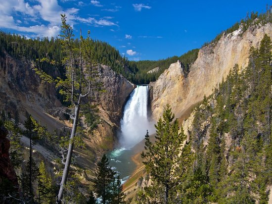 Bed And Breakfast Near Yellowstone National Park