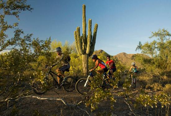 Phoenix, AZ : Biking at McDowell Mountain Preserve