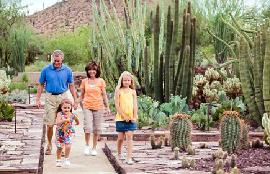 Phoenix, AZ: Family Fun at the Desert Botanical Garden