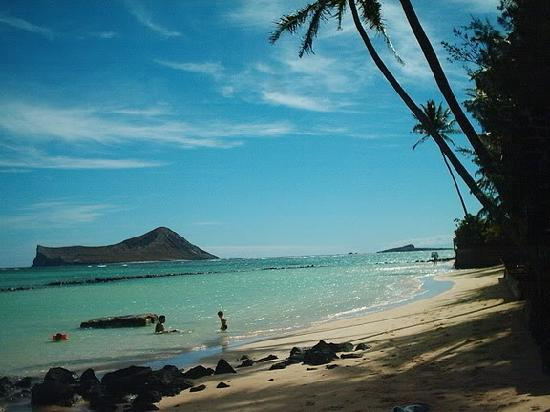 Aloha Beach Vacation Rentals: Our wonderful beach -great for relaxing!