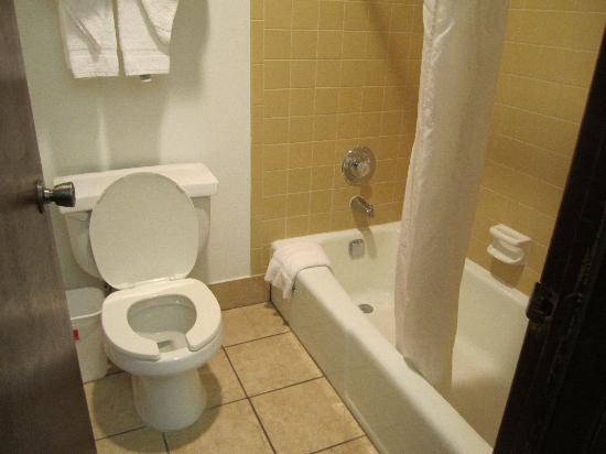 Econo Lodge Madison: bathroom