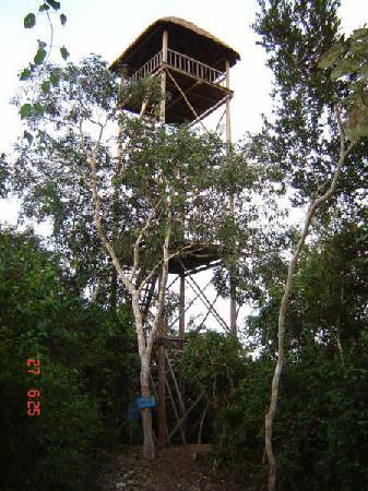 Cabanas Uh Najil Ek Balam : torre de observación
