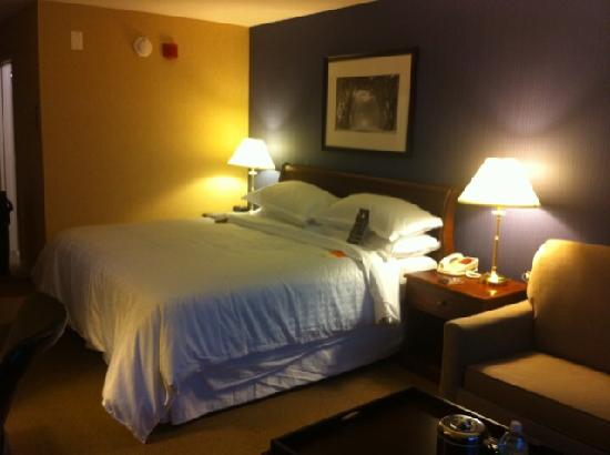 Sheraton Bucks County Hotel: Room 1