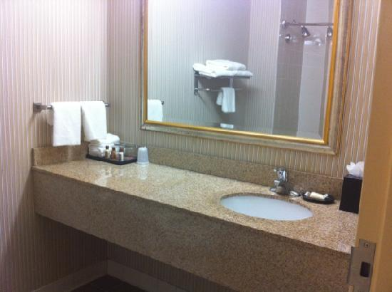 Sheraton Bucks County Hotel: Bathroom