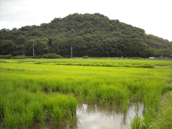 Yamato Sanzan: 耳成山