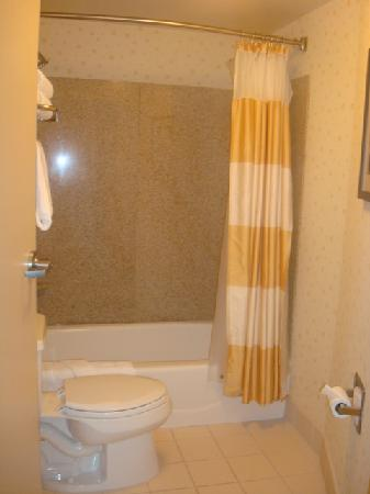 SpringHill Suites Colorado Springs South : Bathroom