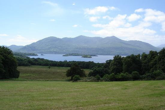 Woodlands Bed & Breakfast: View from Killarney National Park, 5 min. walk from Woodlands