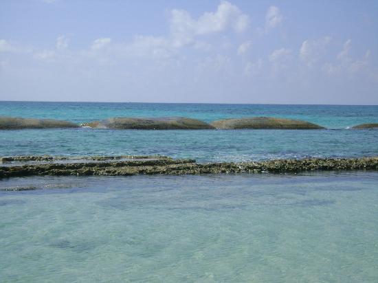 El Dorado Royale, a Spa Resort by Karisma: Beach and Ocean