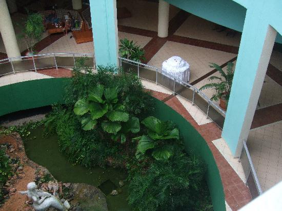 Brisas del Caribe Hotel: oasis in the foyer