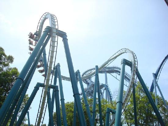 Busch Gardens: Alpengiest.  That rough cobra loop