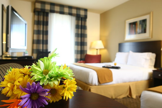 Holiday Inn Express Atlanta-Emory University Area: Guest Room with Double beds