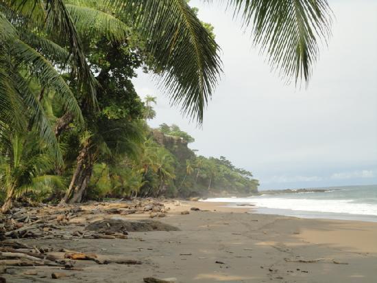 Tango Mar Beachfront Boutique Hotel & Villas: beach