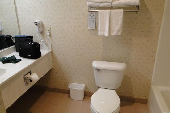 Country Inn & Suites By Carlson, Chippewa Falls: Bathroom was good size