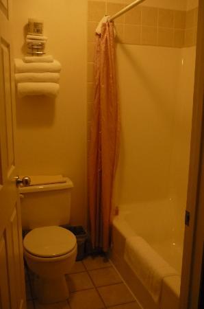 BCMInns - Coleman: restroom