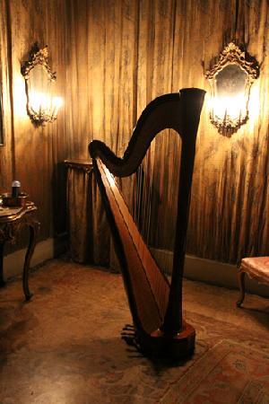 Musica A Palazzo: Harp inside the Palazzo