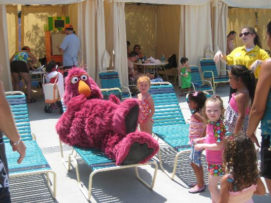 Sesame Place : Being silling in the Cabana area