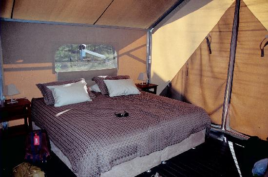 Bungle Bungle Wilderness Lodge: Very comfy cosy bed in tent