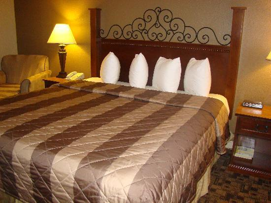 Quality Inn Wilsonville: King size bed