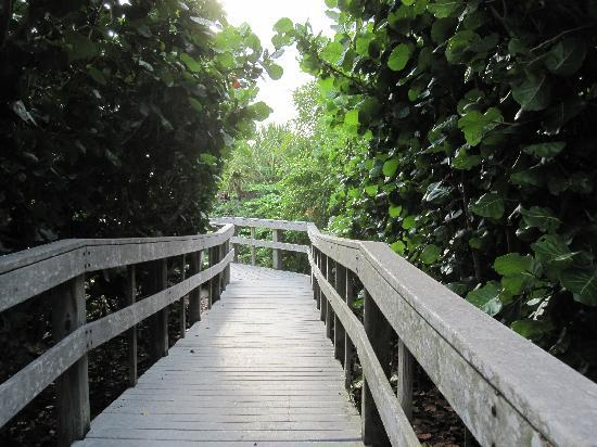 South Beach Place: Walkway to the beach