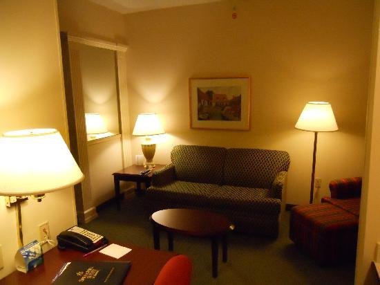 "SpringHill Suites Minneapolis Eden Prairie: ""Living Room"""