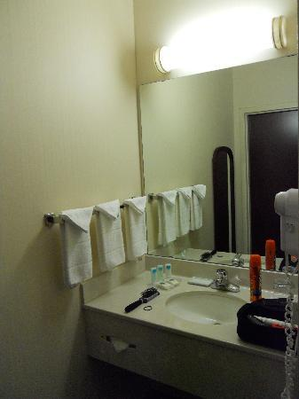 SpringHill Suites Minneapolis Eden Prairie: Sink Outside Bath