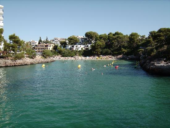 Aparthotel Ferrera Blanca: Thank goodness for the gorgeous Ferrera beach