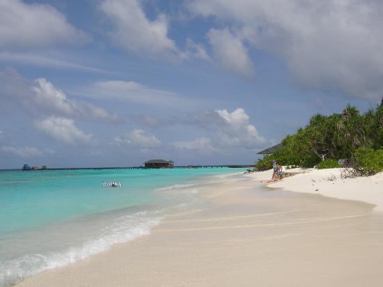 Adaaran Select Meedhupparu: Our beach