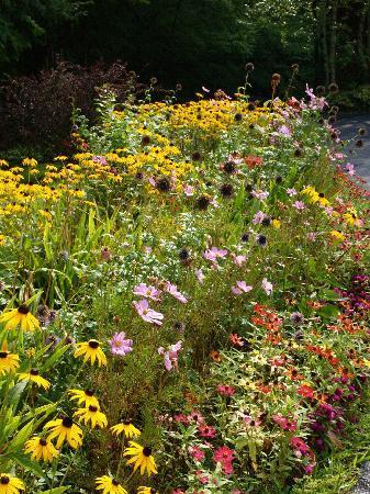 Berkshire Hills Country Inn: Garden
