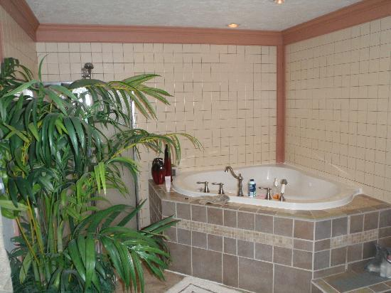 Canna Country Inn: Bathroom in the Serenity Suite