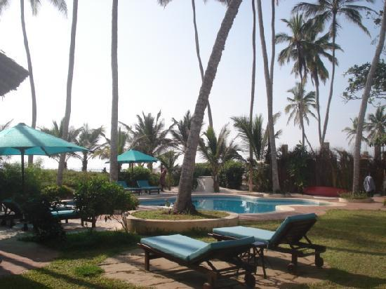 Diani Blue: The pool