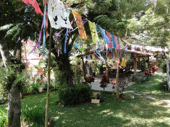 Meson de San Fernando: Backyard of Cipi Hostel