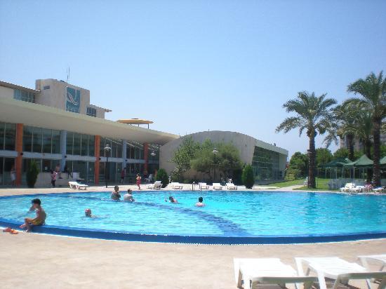 Quality Inn : La piscine en plein soleil