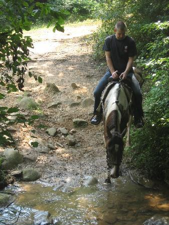 Blanche Manor Horseback Riding : Blue takes a water break