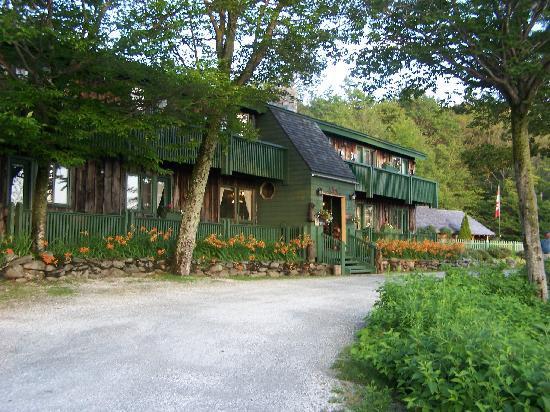 Lotus Lodge Inn: Black Bear Inn