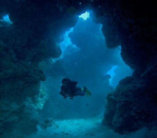 Palancar Caves Picture Of Living Underwater Private