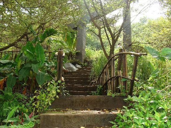 Lavasa, Indien: natures trail near ekant retreat hotel