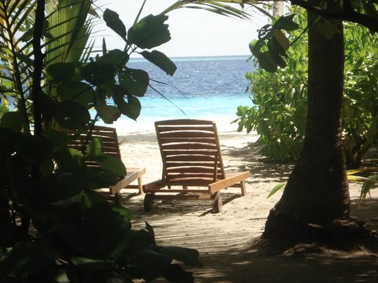 Filitheyo Island Resort: view from our room