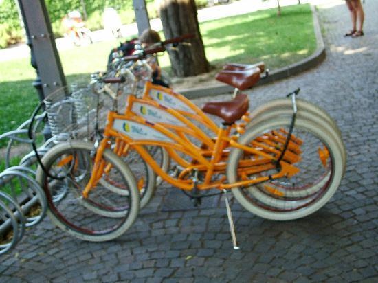 Hotel Villa Stella: The Bikes