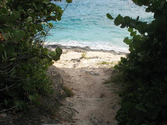 Horseshoe Bay Beach: Coastal Path- Bermuda's South Shore Park