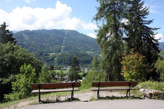 Jardin botanique Alpin de la Jaysinia : Vue du sommet du jardin