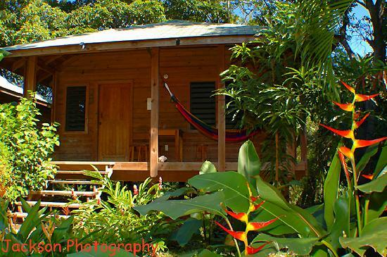 Hotel Chillies: 2 bedroom cabins